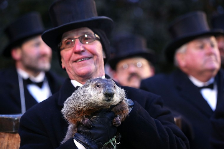 Groundhog co-handler Ron Ploucha (2nd L) holds Punxsutawney Phil after Phil didn't see his shadow and predicting an early spring during the 127th Groundhog Day Celebration at Gobbler's Knob on February 2, 2013 in Punxsutawney, Pennsylvania. The Punxsutawney 'Inner Circle' claimed that there were about 35,000 people gathered at the event to watch Phil's annual forecast.  (Photo by Alex Wong/Getty Images)