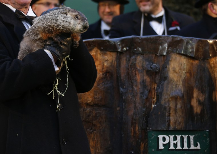 Groundhog co-handler Ron Ploucha holds famed weather prognosticating groundhog Punxsutawney Phil as he prepares to make his annual prediction on Gobbler's Knob in Punxsutawney, Pennsylvania, on the 127th Groundhog Day, February 2, 2013. Phil did not see his shadow signaling an early end to winter. REUTERS/Jason Cohn