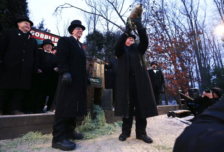 Groundhog co-handler John Griffiths (R) holds up Punxsutawney Phil as co-handler Ron Ploucha (3rd L) looks on after Phil didn't see his shadow and predicting an early spring during the 127th Groundhog Day Celebration at Gobbler's Knob on February 2, 2013 in Punxsutawney, Pennsylvania. The Punxsutawney 'Inner Circle' claimed that there were about 35,000 people gathered at the event to watch Phil's annual forecast.  (Photo by Alex Wong/Getty Images)