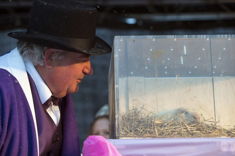 Mayor John Close listens to Wiarton Willie during Groundhog Day celebrations in Wiarton, Ontario, February 2, 2013. Willie did not see his shadow signaling an early spring. REUTERS/Geoff Robins