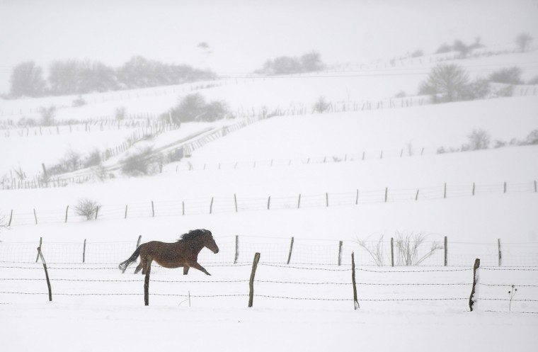 A horse gallops in a snow covered field in the Northern Spanish Basque village of Gujuli. (Rafa Rivas/Getty Images)