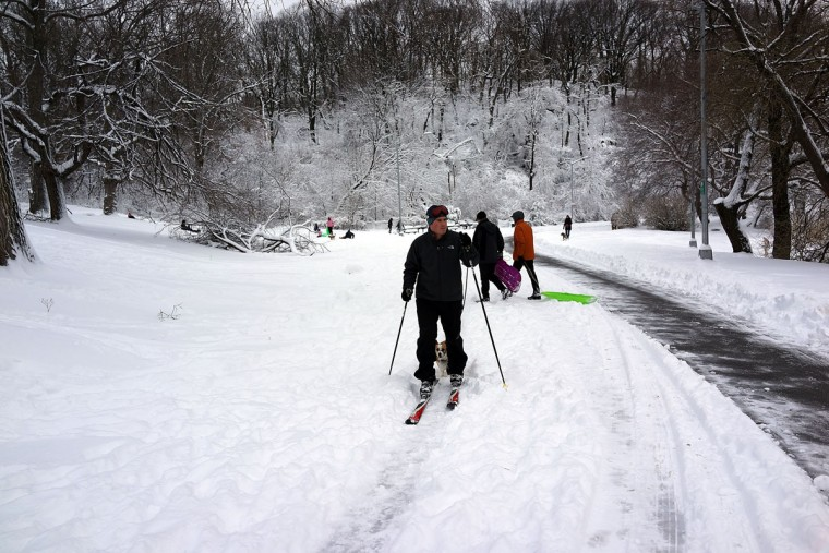 A man cross country skis in Prospect Park in Brooklyn the morning after a massive snow storm on February 9, 2013 in New York . New Yorkers woke up to over 10 inches of snow, Saturday morning while parts of New England received over 30 inches following a storm that brought high winds and blizzard-like conditions to the region. (Spencer Platt/Getty Images)
