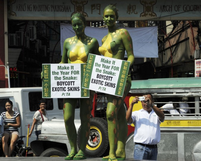 Activists for People for the Ethical Treatment of Animals (PETA) with their bodies painted like snakeskin pose for a photo during a protest near China town in Manila ahead of the Chinese Lunar New Year of the Snake. The activists want tourists and shoppers to know that snakes killed for their skins are often decapitated, beaten to death or even skinned alive and therefore should be left in the jungle. (Ted Aljibe/AFP/Getty Images)