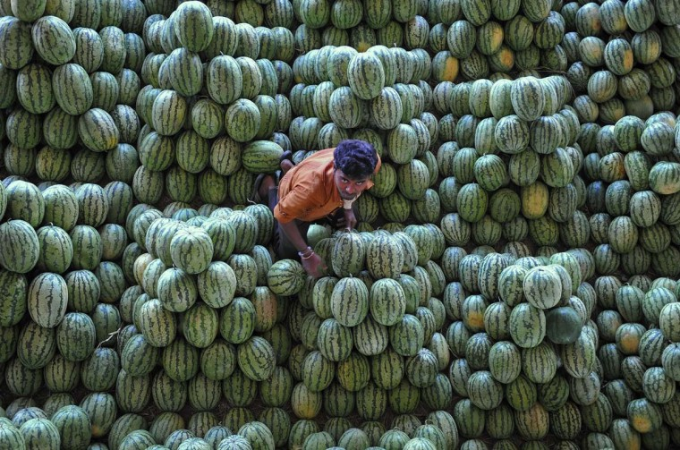An Indian labourer segregates watermelon at the Gaddiannaram fruit market in Hyderabad on February 28, 2013. India's government on Thursday earmarked $1.9 billion for a populist programme to combat malnutrition, a move seen as a major vote winner for the ruling Congress party in elections next year. (Noah Seelam/AFP/Getty Images)
