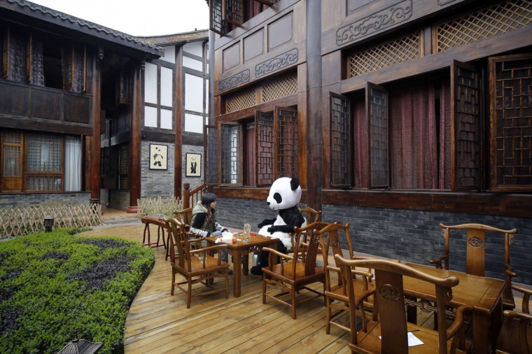 An employee dressed in a panda costume talks to a customer during the soft opening of a panda-themed hotel at the foot of Emei Mountain, in southwest China's Sichuan province. According to local media, the hotel is the first panda-themed hotel in the world and will officially open in May with room rates from 300 ($48) to 500 yuan per night. (China Daily)