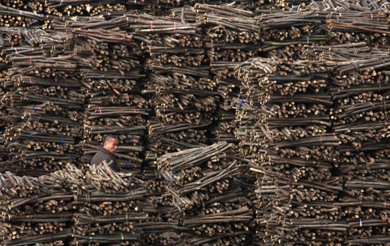 A worker walks past piles of wood at a wood processing factory in Huaibei, Anhui province. (Reuters)