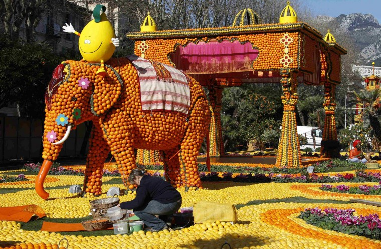 A worker puts the final touch near an Indian elephant sculpture made with lemons and oranges during the 80th Lemon festival in Menton, France. Some 145 metric tons of lemons and oranges are used to make displays during the 80th festival, which is themed 'Around The World In 80 Days,' and runs from February 16 through March 6. (Eric Gaillard/Reuters)