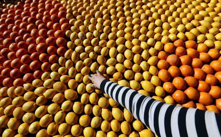 A visitor touches a pattern made with lemons and oranges during the 80th Lemon festival in Menton, France. Some 145 metric tons of lemons and oranges are used to make displays during the 80th festival, which is themed 'Around The World In 80 Days,' and runs from February 16 through March 6. (Eric Gaillard/Reuters)