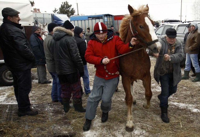 People are watching as a breeders handle their horse at Skaryszew horse fair February 18, 2013. (Peter Andrews/Reuters)