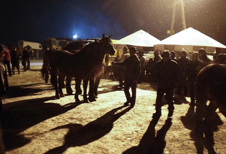 Horse breeders present their animals during early morning hours at Skaryszew horse fair February 18, 2013. (Peter Andrews/Reuters)