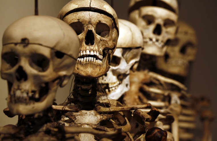 Skeletons are pictured at Lombroso Museum in Turin January 28, 2013. Many of the body parts on display in the museum were taken from prisons without any permission from family members. Now hundreds of years later some distant relatives and local communities are saying it is time to get the body parts back. (Stefano Rellandini/Reuters)