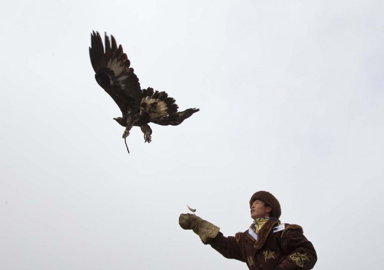 A Kazakh hunter watches as his tamed golden eagle is released into the air during an annual hunting competition in Chengelsy Gorge, some 150 km (93 miles) east of Almaty February 22, 2013. Picture taken February 22, 2013. (Shamil Zhumatov/Reuters)