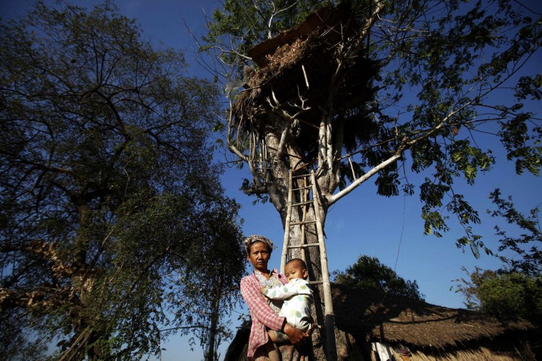 Than Shin, 52, holds her grandchild in front of her family's tree-house built for protection, after telling her personal experience with wild elephants attacking her house, in Kyar Chaung village, Taikkyi Township February 6, 2013. People in Kyar Chaung and surrounding villages some 60 miles (96.5 km) from Yangon live in constant fear of wild elephants after animals started attacking humans some 15 years ago. Every year, an average of seven people die from such attacks in the area, according to the government's forest department. Elephants come close to the villages because of lack of food in the forests where they usually live due to deforestation, villagers say. (Minzayar/Reuters)