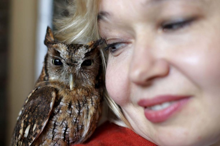 Russian painter Natalia Tsarkova poses with her owl in downtown Rome February 14, 2013. Tsarkova painted the official portrait of Pope Benedict in 2007 and the official portrait of Pope John Paul II for the 2000 Jubilee. (Max Rossi/Reuters)