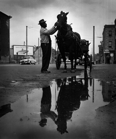 "December 7, 1958 - Baltimore, Md - A ""junker"" checks the harness on his horse in the early morning hours. Richard Stacks/Baltimore Sun"
