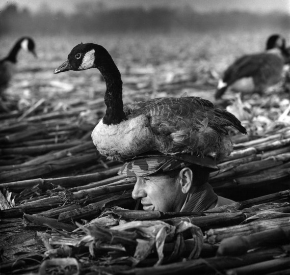 January 7, 1962-When in the pit, hunter Russell S. Baker, Jr., wears a hat with a goose decoy mounted on the top. Richard Stacks/Baltimore Sun