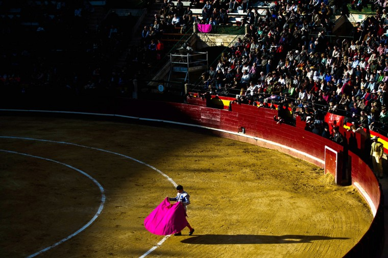 A bullfighter performs during a bullfight as part of the Las Fallas Festival on March 18, 2013 in Valencia, Spain. The Fallas festival, which runs from March 15 until March 19, celebrates the arrival of spring with fireworks, fiestas and bonfires made from large Ninots (puppets). (David Ramos/Getty Images)