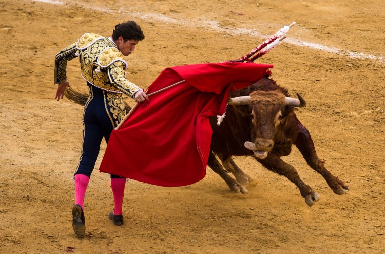 Bullfighter Daniel Luque performs during a bullfight as part of the Las Fallas Festival in Valencia, Spain. The Fallas festival, which runs from March 15 until March 19, celebrates the arrival of spring. (David Ramos/Getty Images)