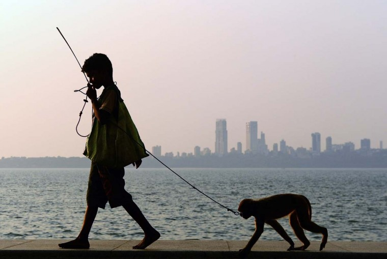 Suraj, 11, walks with his pet monkey towards a group of tourists to start a show on the Marine Drive promenade, which overlooks the Arabian Sea, in Mumbai on March 5, 2013. Suraj earns around 110 rupees ($2) by putting up shows and acrobatic performances of his monkey for tourists. (Indranil Mukher/AFP/Getty Images)