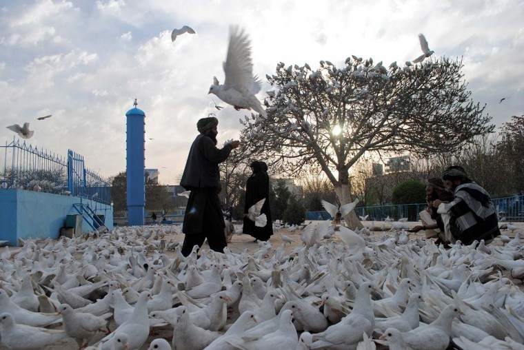 Afghan men feed pigeons in front of the shrine of Hazrat-i Ali ahead of 'Nowruz', the Persian New Year celebrations in Mazar-i Sharif on March 17, 2013. Nowruz, one of the biggest festivals of the war-scarred nation, marks the first day of spring and the beginning of the year in the Persian calendar. Nowruz is calculated according to a solar calendar, this coming year marking 1392. (Farshad Usyan/AFP/Getty Images)