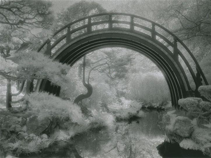 """""""Japanese Garden"""" photo by Joan Saba"""