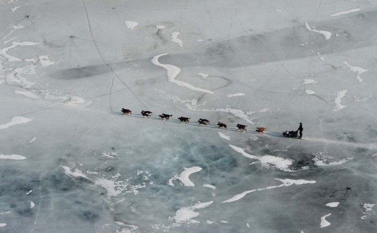An Iditarod musher crosses ice between the Rohn and Nikolai check points on Tuesday, March 5, 2013, in Alaska. (Bill Roth/Anchorage Daily News/MCT)