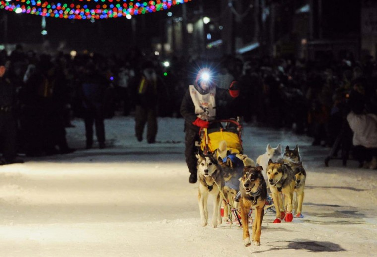 Mitch Seavey is the first musher to leave White Mountain, Alaska, toward the finish line in Nome on Tuesday, March 12, 2013, during the Iditarod Trail Sled Dog Race. Seavey, 53, had won the race previously in 2004. (Bill Roth/Anchorage Daily News/MCT)