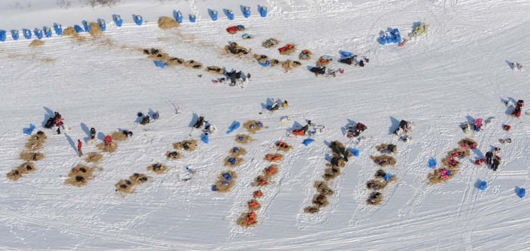 Aerial view of dog teams resting on the Fish River in White Mountain, Alaska, on Tuesday, March 12, 2013, during the Iditarod Trail Sled Dog Race. Mushers are required to take an 8-hour layover before proceeding to the Nome finish line. (Bill Roth/Anchorage Daily News/MCT)