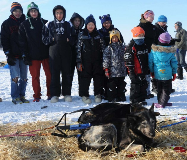 Children from White Mountain School look at Mitch Seavey's dogs resting in White Mountain, Alaska, on Tuesday, March 12, 2013, during the Iditarod Trail Sled Dog Race. (Bill Roth/Anchorage Daily News/MCT)