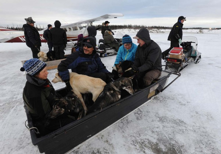 Iditarod volunteers bring dropped dogs to the Nikolai, Alaska, airport on Wednesday, March 6, 2013, during the Iditarod Dog Sled Race. (Bill Roth/Anchorage Daily News/MCT)