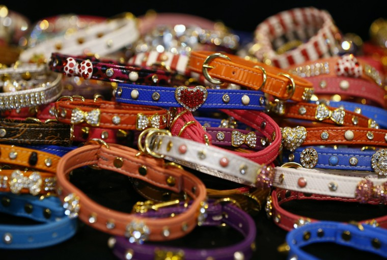 Collars are displayed for sale during the first day of the Crufts Dog Show in Birmingham. (Darren Staples/Reuters photo)