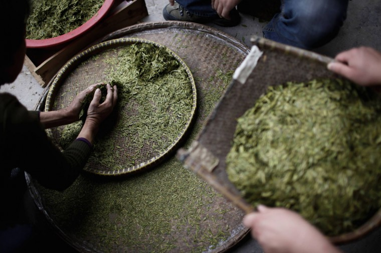 Locals filter tea leaves at a tea plantation in Xinchang, Zhejiang province on March 30, 2013. According to local media reports, China is the world's largest tea producing country with an output of 1.9 million tonnes in 2012. (Aly Song/Reuters)