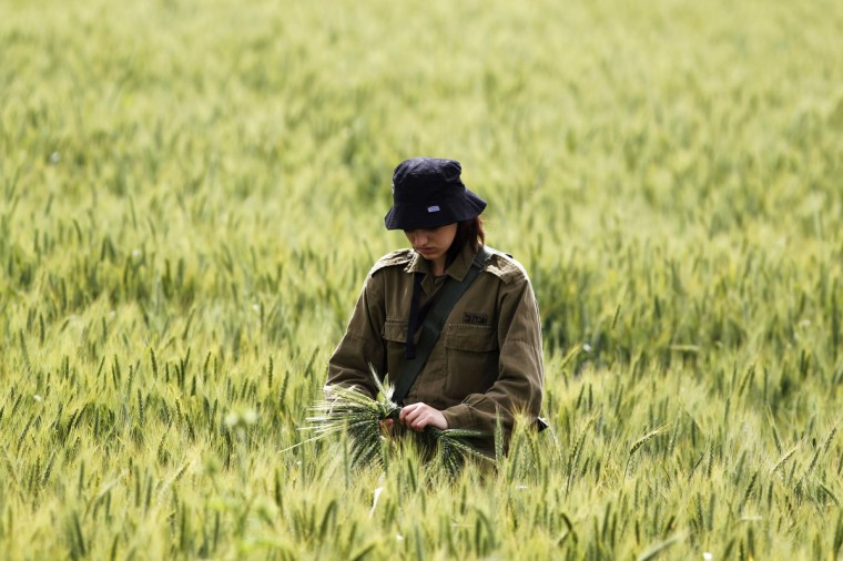 An Israeli soldier collects wheat stalks as her comrades search for remains at the site of a helicopter crash in a field near Kibbutz Revadim in southern Israel. The Israeli air force helicopter crashed in southern Israel on Tuesday killing its two pilots, the Israeli military said. (Amir Cohen/Reuters)