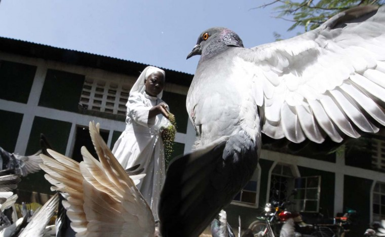 A member of the faithful feeds pigeons at the St. Peter's Legio Maria Manyatta church in the western town of Kisumu, 218 miles from the capital Nairobi, March 10, 2013. (Thomas Mukoya/Reuters)