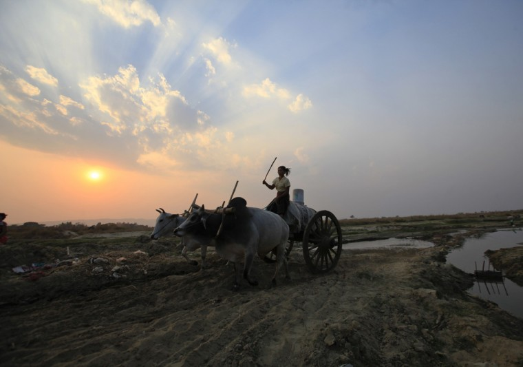 A woman drives an oxen cart as she collects water in a creek at Naypyitaw, Myanmar. (Soe Zeya Tun/Reuters)