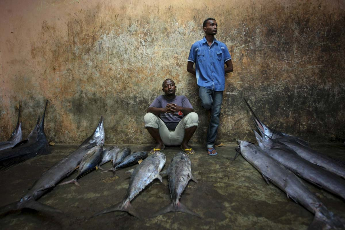 Off the hook: Fishing industry in Mogadishu
