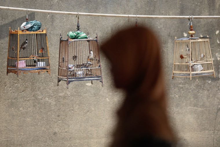 A woman walks past birdcages after she crossed the border from Malaysia into Thailand in Sungai Kolok in southern Narathiwat province March 8, 2013. Last week, in a deal brought about with the help of Malaysia, Thailand agreed to pursue a peace talks with the Barisan Revolusi Nasional (BRN), one of the Muslim groups fighting for autonomy in the south. Resistance to Buddhist rule from Bangkok has existed for decades in the predominantly Muslim provinces of Pattani, Yala and Narathiwat, which were part of a Malay sultanate before being annexed by Thailand in 1909. (Damir Sagolj / Reuters)