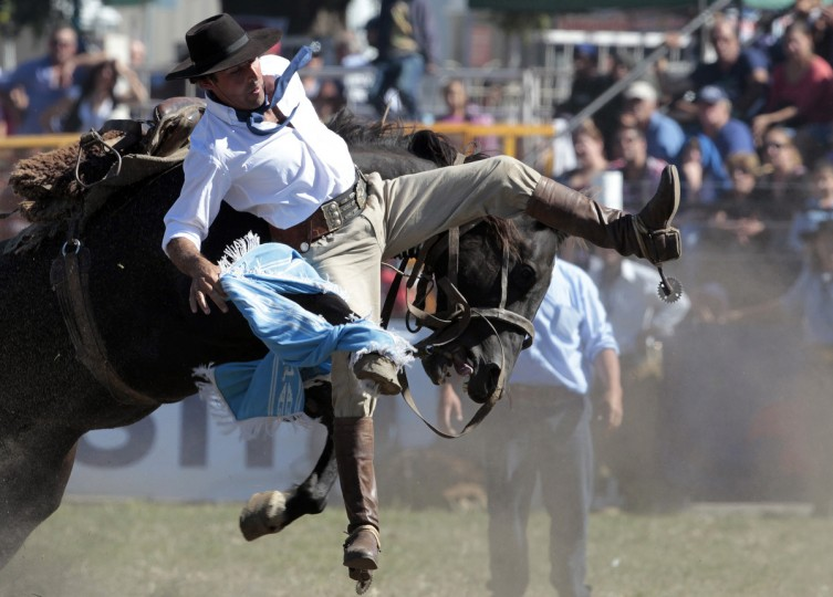 A gaucho is tackled by a wild horse during the annual celebration of Criolla Week in Montevideo. (Andres Stapff/Reuters photo)