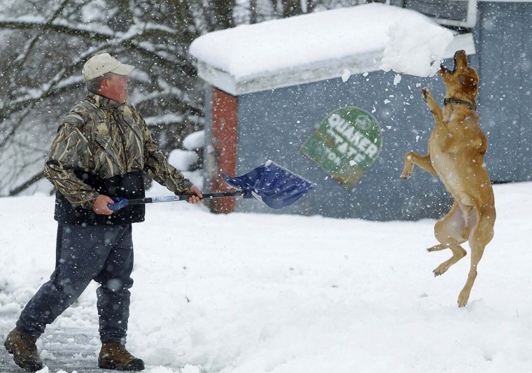Bill Groves plays with his dog Red while shoveling snow during a massive blizzard near Mt. Jackson, Virginia March 6, 2013. Washington and its suburbs face what could be their heaviest snowfall in two years on Wednesday, as a fierce storm headed east after blanketing the Midwestern United States, snarling traffic and causing hundreds of flight cancellations. (Gary Cameron/Reuters)