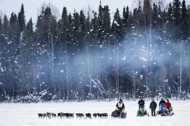 Musher Matt Failor greets well-wishers along the trail after the re-start of the Iditarod dog sled race in Willow, Alaska March 3, 2013. From Willow, the race runs for almost 1000 miles as it crosses the state. (Nathaniel Wilder/Reuters)