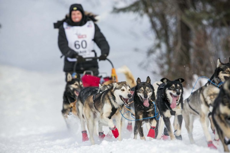 Cindy Abbott's team charges down the trail after the re-start of the Iditarod dog sled race in Willow, Alaska March 3, 2013. From Willow, the race runs for almost 1000 miles as it crosses the state. (Nathaniel Wilder/Reuters)