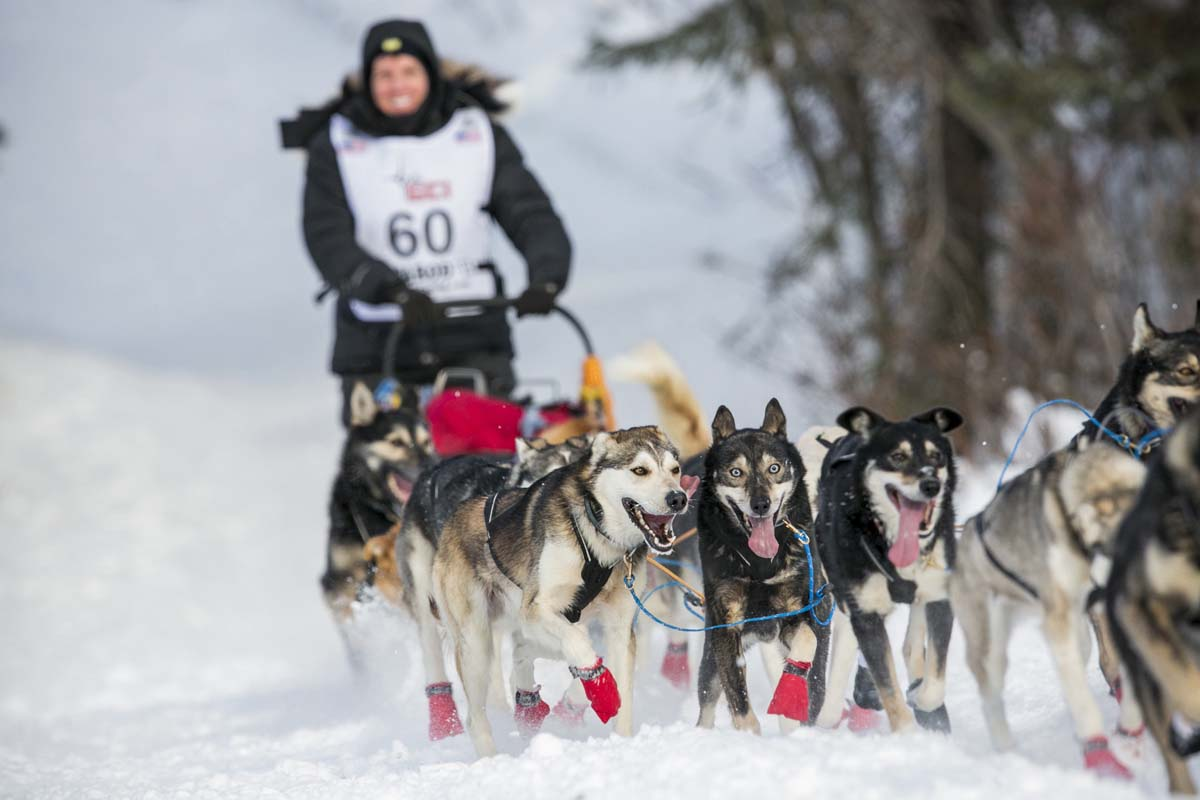 Mitch Seavey and his team of dogs cross finish line to win ...