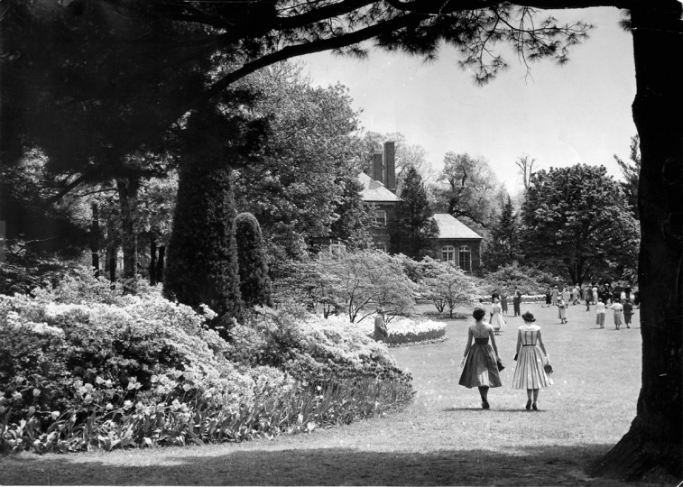 People tour Sherwood Gardens in 1955. (Baltimore Sun File Photo)