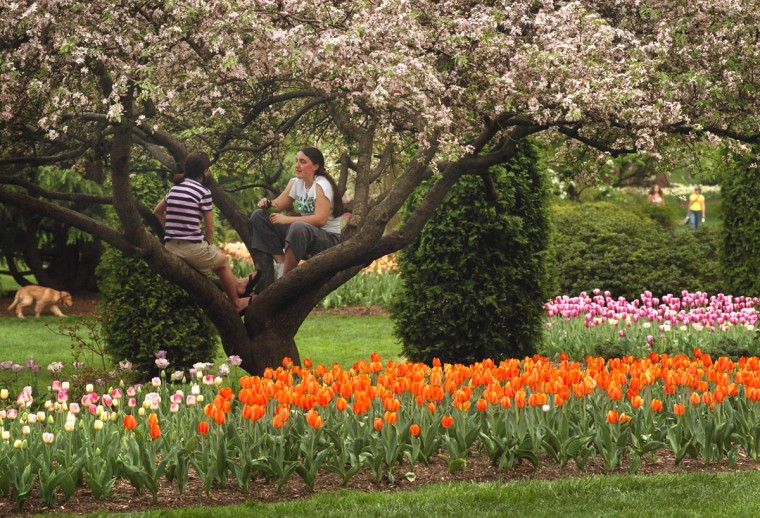 Teresa Schell and Anna Dennery -- both students at Loyola College -- enjoy the afternoon at Sherwood Gardens in the Guilford area of Baltimore in 2004. (Lloyd Fox, The Baltimore Sun)