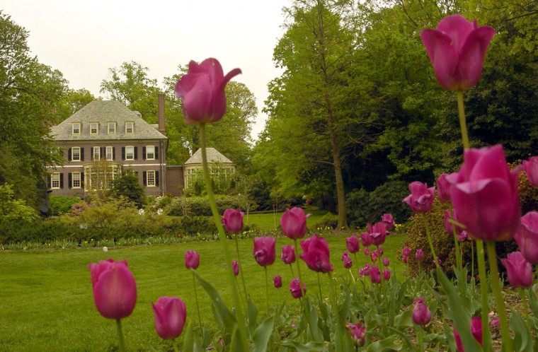 The back of the Sherwood Mansion, which overlooks Sherwood Garden in 2005. (Amy Davis, The Baltimore Sun)