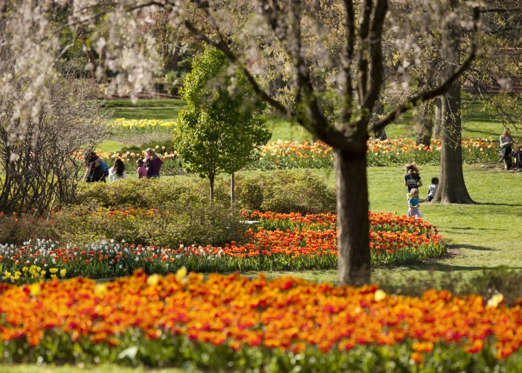 Sherwood Gardens in bloom. (Greg Pease, Courtesy of The Guilford Association)