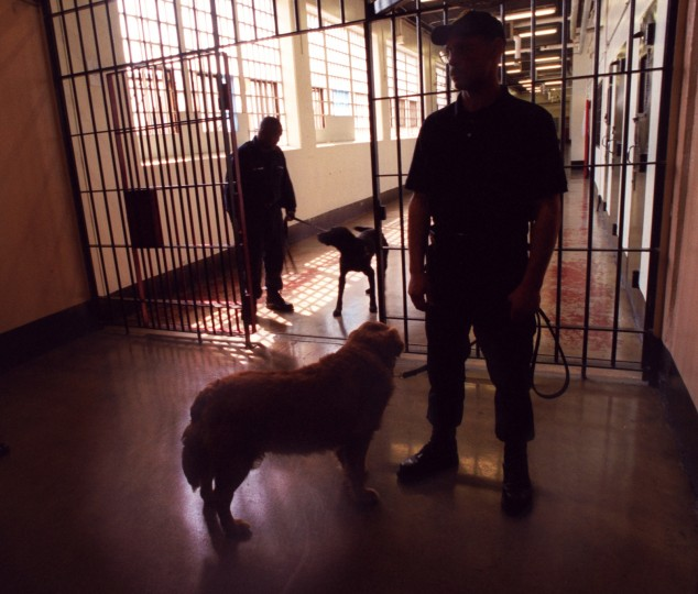 In 2002 at the Baltimore City Detention Center, Sgt. John Hudgins (left) with his drug sniffing dog, Jett, and Officer Chase Craddock with his drug sniffing dog, Rusty, wait for a group of detainees to be brought to the hallway for a search. (Jed Kirschbaum, The Baltimore Sun)