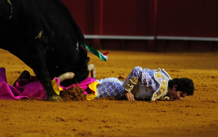 French matador Sebastian Castella is gored by a bull during a bullfight at the Maestranza bullring in Sevilla. (Cristina Quicler/Getty Images)