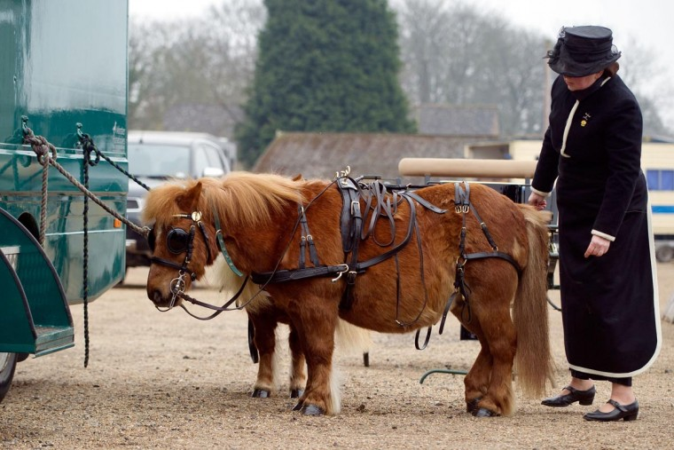 An exhibitor prepares her horse for the parade on April 1, 2013 in Ardingly, United Kingdom. The Parade is an amalgamation of two traditional parades, the London Cart Horse Parade, founded in 1885 and the London Van Horse Parade, founded in 1904. The objectives of these parades was to improve the general condition and treatment of London's working horses and to encourage drivers to take a humane interest in the welfare of their animals. There is a wide variety of breeds of animal ranging from donkeys to Dutch Friesians and Gelderlander's, to magnificent heavy horses. (Bethany Clarke/Getty Images)