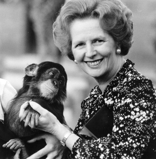 British prime minister Margaret Thatcher (right) holding a chimpanzee in this undated photo. (Keystone/Getty Images)
